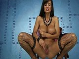 Bo�sk� sexbomba Lisa Ann si vysta�� sama s dildem - freevideo