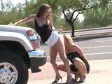 Ko�ky si l�kou kundy u hlavn� silnice - freevideo
