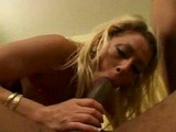Sami�ka s obojkem poslou�� �tve�ici �ernoch� - freevideo